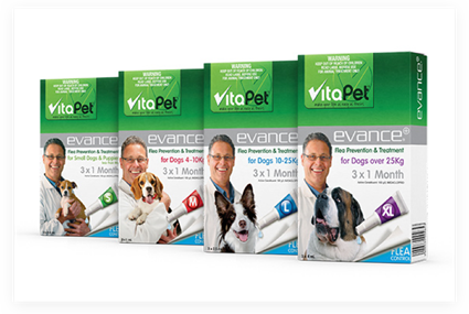 Fleas, Ticks and Worming