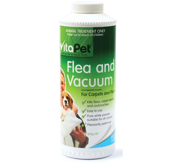 Flea and Vacuum
